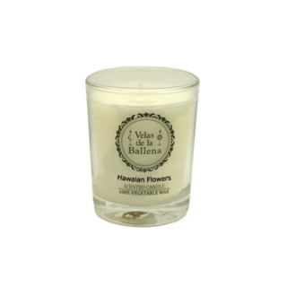 Small vegetable wax candle fruit